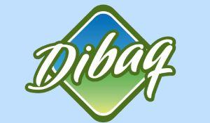 Dibaq pomáhá Chráněným dílnám Kopeček v Bartošovicích v Orlických horách.